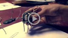 Clay Animation Module 2