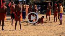 Indigenous Game